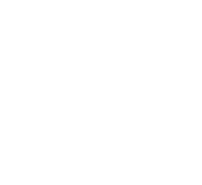 logo groupe footer
